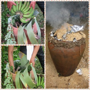 green bananas are covered up in huge clay pots to speed their ripening