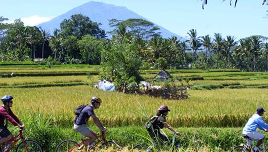 Eco Bike Tour Bali